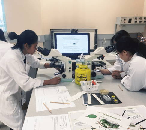 Newsletter - Science excursion